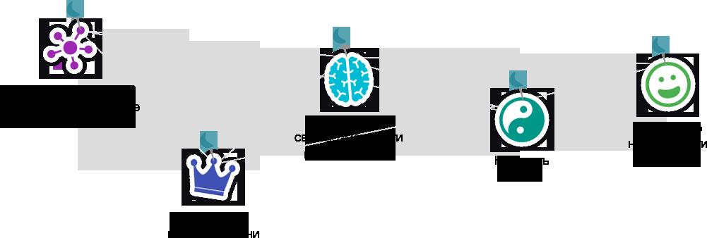 Диаграмма тренинга